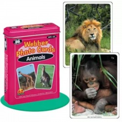 FLASH CARDS ANIMALES 62...